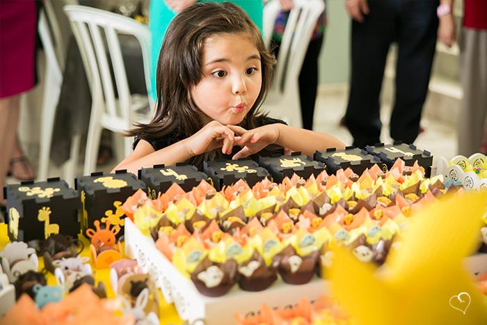 aniversario-infantil-sao-jose-dos-campos-e-vale-do-paraiba-20